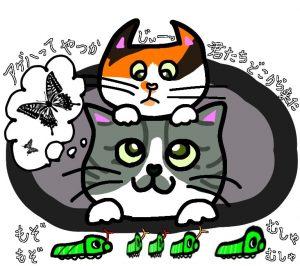 猫とアゲハ